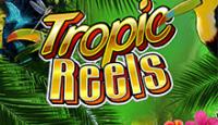 Тропические Барабаны – игровой автомат на сайте азартных развлечений